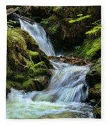 Packer Falls Vert 1 Fleece Blanket