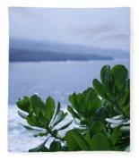 Pailoa Near Mokulehua At Hale 'o Pi'ilani Heiau Maui Hawaii Fleece Blanket
