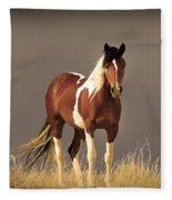 Paint Filly Wild Mustang Sepia Sky Fleece Blanket