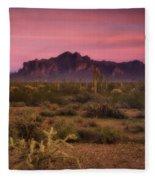 Paint It Pink Sunset  Fleece Blanket