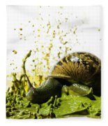 Paint Sculpture And Snail 2 Fleece Blanket