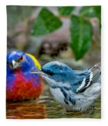 Painted Bunting & Cerulean Warbler Fleece Blanket