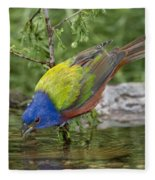 Painted Bunting Fleece Blanket