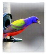 Painted Bunting - Img 9755-004 Fleece Blanket