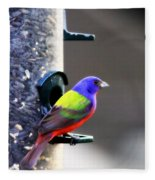 Painted Bunting - Img 9757-002 Fleece Blanket