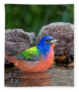 Painted Bunting Passerina Ciris In Water Fleece Blanket