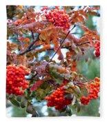 Painted Mountain Ash Berries Fleece Blanket