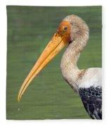 Painted Stork Mycteria Leucocephala Fleece Blanket
