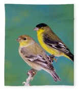 Pair Of Lesser Goldfinches Fleece Blanket