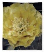 Pale Yellow Prickly Pear Bloom  Fleece Blanket