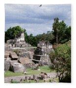 Palenque Ruins Fleece Blanket