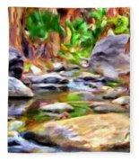 Palm Canyon Trail Fleece Blanket