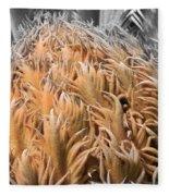 Palm Flower Fleece Blanket