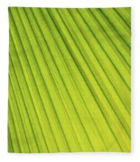 Palm Tree Leaf Abstract Fleece Blanket