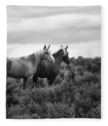 Palomino - Buttes - Wild Horses - Bw Fleece Blanket