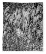 Pampas Grass Monochrome Fleece Blanket