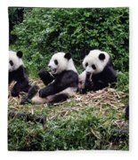 Pandas In China Fleece Blanket