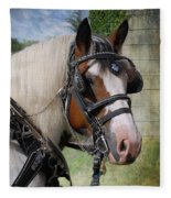 Pandora In Harness Fleece Blanket