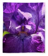 Pandora's Purple Fleece Blanket
