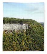Panorama Of Cliff At Letchworth State Park Fleece Blanket