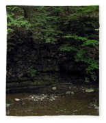 Panorama Of Wolf Creek At Letchworth State Park Fleece Blanket