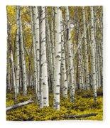 Panoramic Birch Tree Forest Fleece Blanket