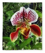 Paph Fiordland Sunset Orchid Fleece Blanket