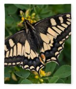 Papilio Machaon Butterfly Sitting On The Lucerne Plant Fleece Blanket
