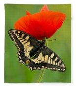 Papilio Machaon Butterfly Sitting On A Red Poppy Fleece Blanket