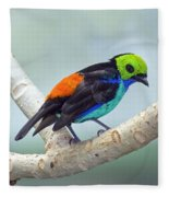 Paradise Tanager Fleece Blanket