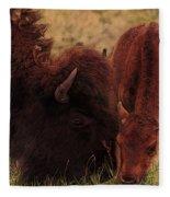 Parent With Newborn Calf Bison Fleece Blanket
