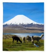 Parinacota Volcano Lake Chungara Chile Fleece Blanket