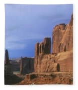 Park Avenue Fleece Blanket