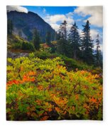 Park Butte Fall Color Fleece Blanket