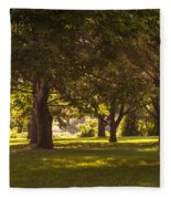 Park By The Rivers Fleece Blanket