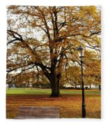 Park Life Fleece Blanket