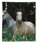Paso Fino Mares Pay Attention Fleece Blanket