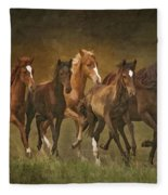 Paso Peruvians Fleece Blanket