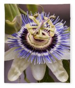 Passiflora Caerulea Fleece Blanket