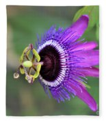 Passiflora Lavender Lady Fleece Blanket
