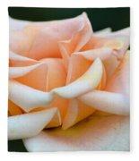 Pastel Peach Rose Fleece Blanket