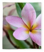 Pastel Pink Plumeria Fleece Blanket