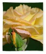 Pastel Rose Ruffles Fleece Blanket