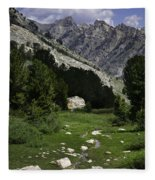 Path Of Life Ruby Mountains Stock Trail Fleece Blanket
