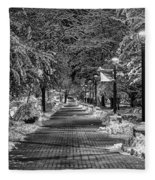 Path Through Eastern Fleece Blanket