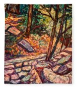 Path To The Cascades Fleece Blanket