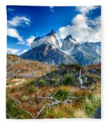 Path To Torres Del Paine Fleece Blanket