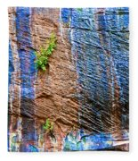 Pattern On Wet Canyon Wall From River Walk In Zion Canyon In Zion National Park-utah  Fleece Blanket