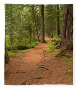 Peaceful Path To Cheakamus Lake Fleece Blanket