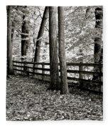 Peaceful Walk Fleece Blanket